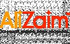 лого ализаем