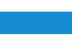 логотип вебзайм